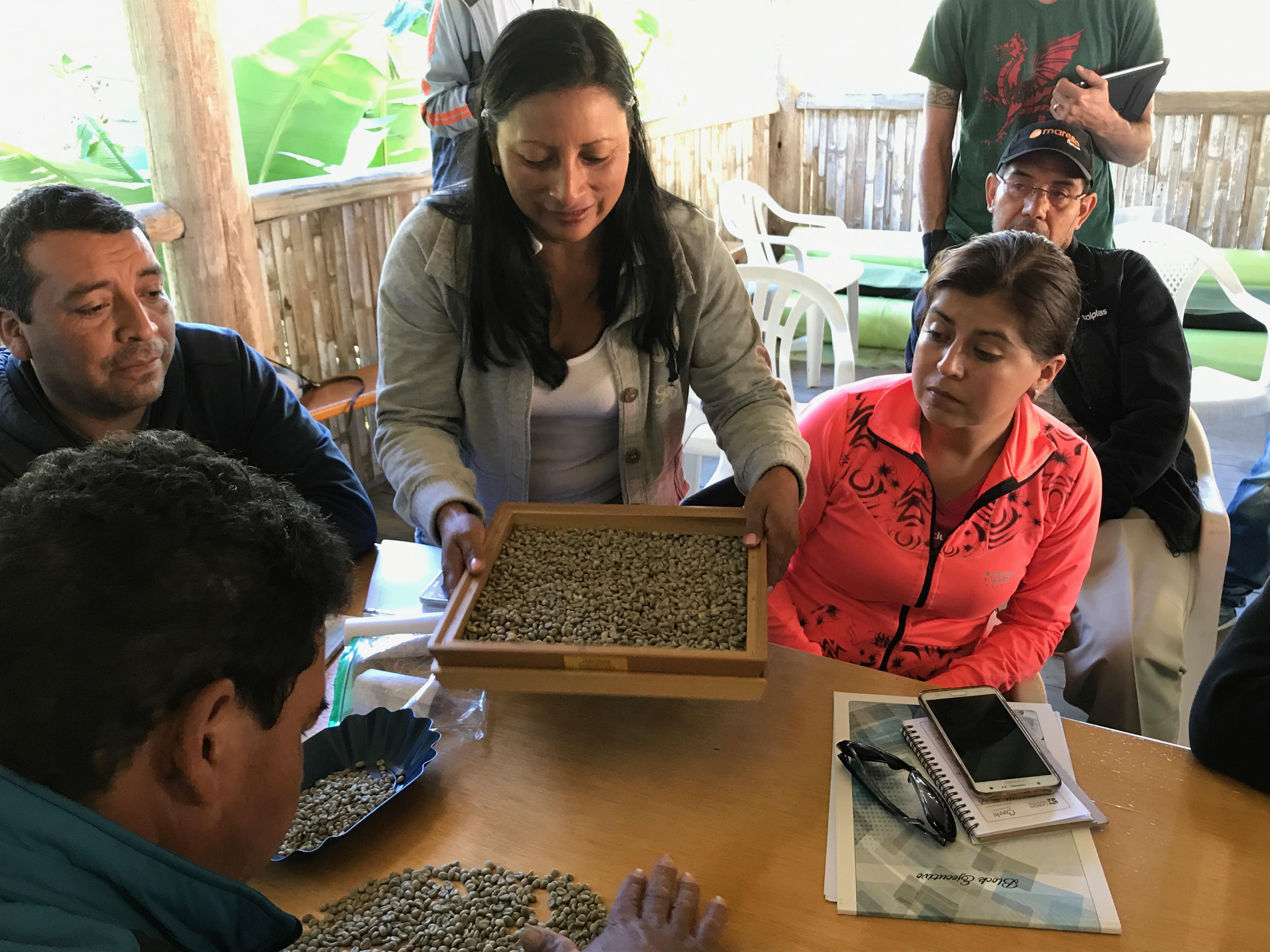 Ecuador_2017_caffe37